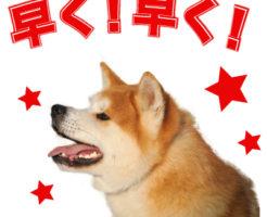 愛犬LINEスタンプ